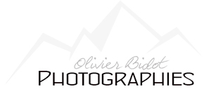 olivier-bidot.jpg